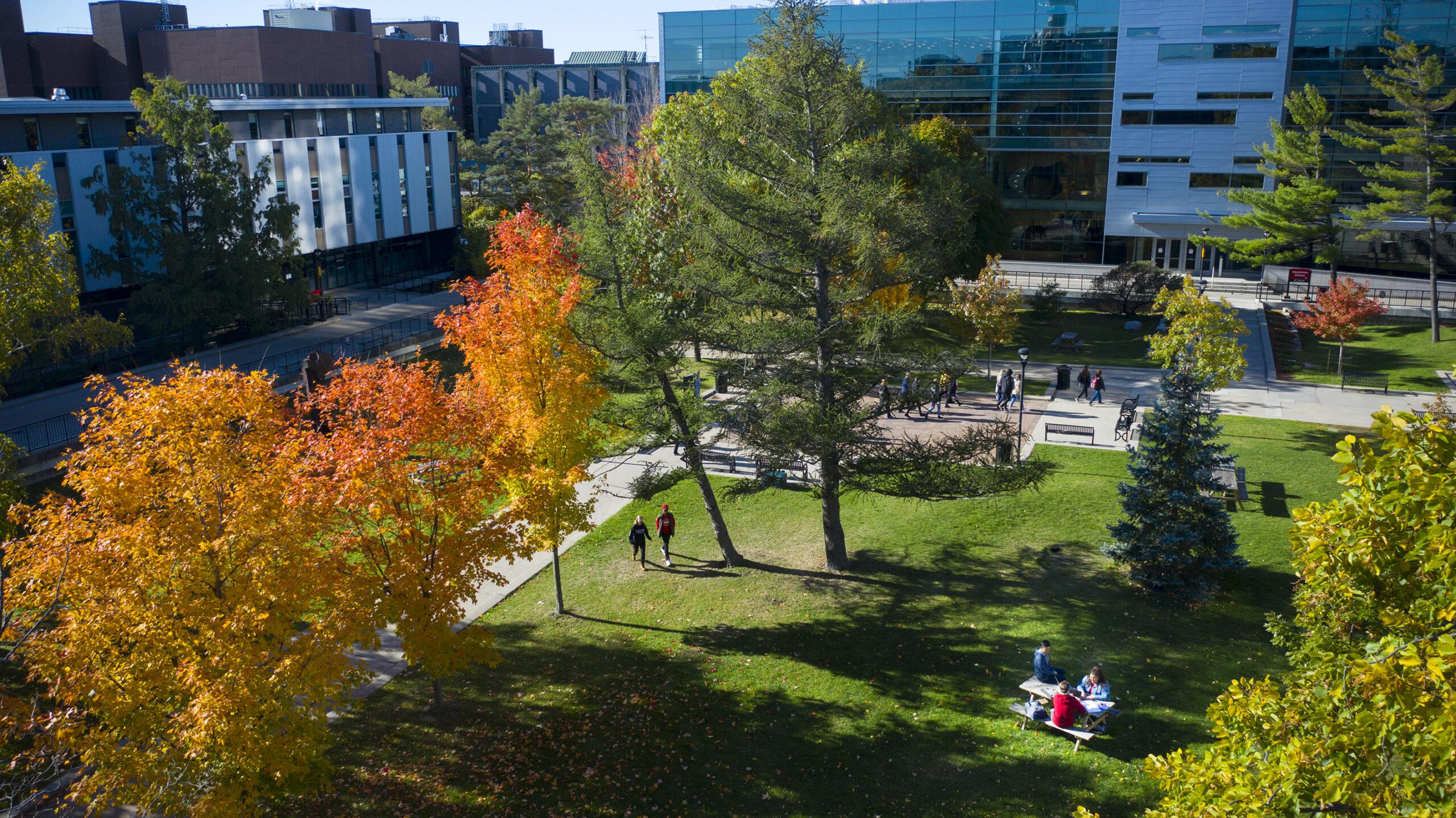 Carleton University Main